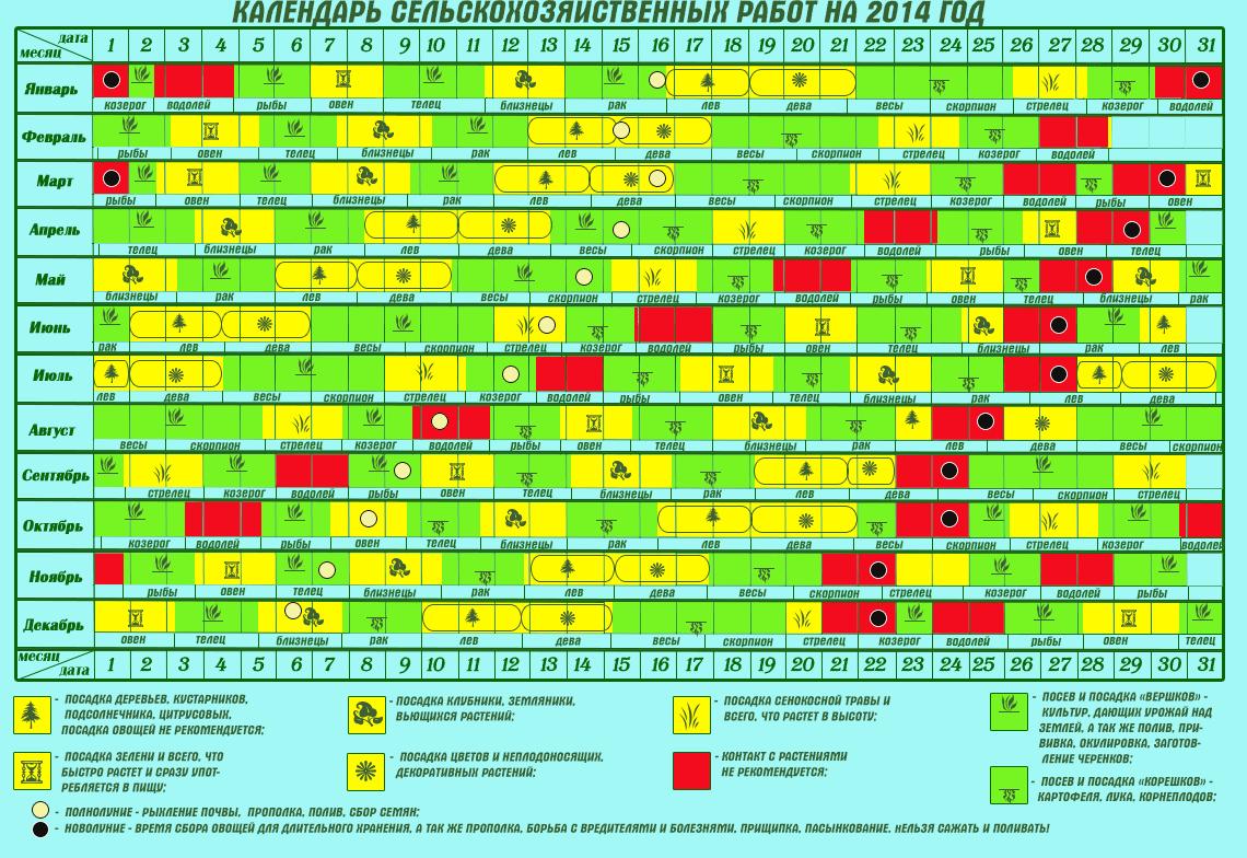 Календарь для посадки овощей и цветов