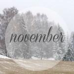 Под знаком луны, ноябрь — 2014